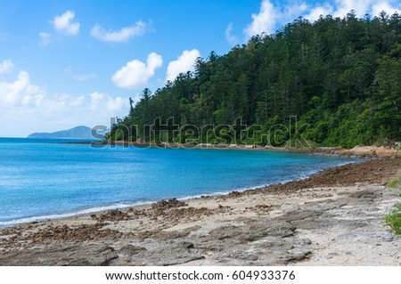 Beautiful beach with turquoise blue water and tropical forest on the background. Whitsunday, Australia