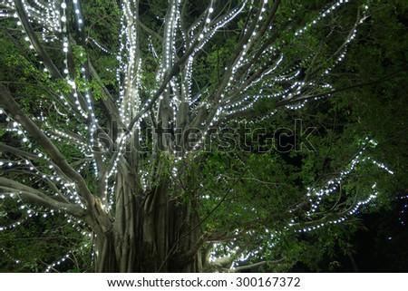 beautiful big tree decorated with glittering lights - stock photo