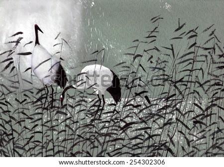 beautiful birds cranes in the reeds - stock photo