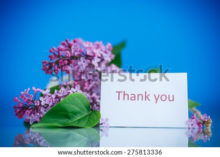 beautiful blooming lilac on a blue background - stock photo