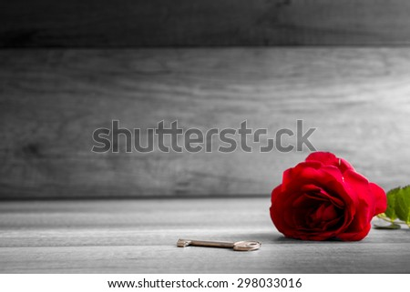 Beautiful blooming  red rose and key on wooden table - selective colour of the rose in a greyscale image conceptual of love, romance, valentines day and devotion. Copyspace on the left. - stock photo