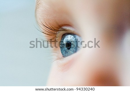 Beautiful blue eye macro shot