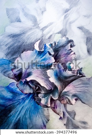 Beautiful blue iris - monochrome graphics on blue tinted paper.. Hand graphics on paper - pencil, ink, colored pens. - stock photo