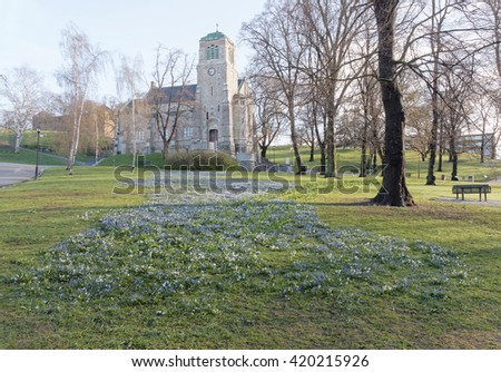 Beautiful blue scilla and white hyacinths flowers in front of the church Stefanskapellet in the background a beutiful day during spring in Stockholm, Sweden