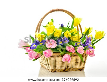 Beautiful bouquet of bright flowers in basket . Isolated on white. Springtime. Basket with tulips.