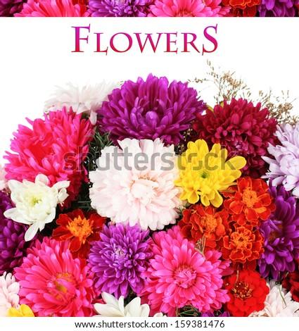 Beautiful bouquet of chrysanthemums close up - stock photo