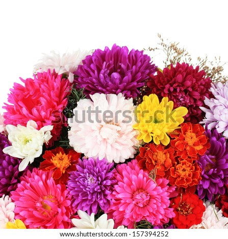 Beautiful bouquet of chrysanthemums on white background