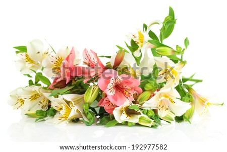 Beautiful bouquet of freesias isolated on white