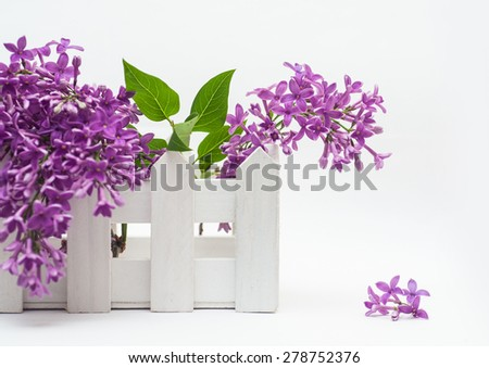 Beautiful bouquet of lilac and a small fence on the white background. - stock photo