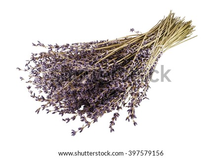 Beautiful bouquet of lilac flowers of the lavender from Provence, France. Fine aroma and health. - stock photo