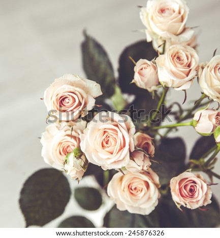 Beautiful bouquet of peach roses in vintage vase on a black background - stock photo