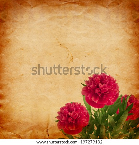 Beautiful bouquet of pink peonies on abstract vintage paper background - stock photo