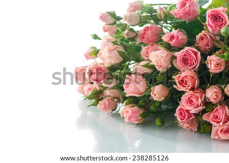 beautiful bouquet of pink roses on a white background - stock photo