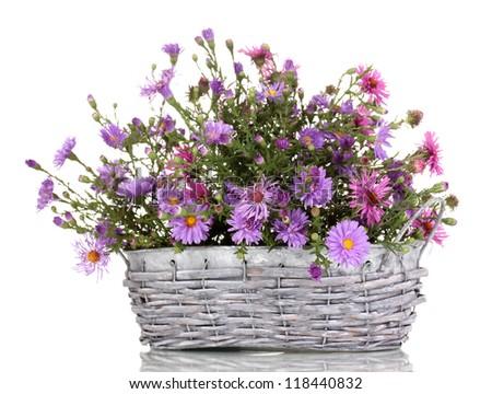 Arreglos Florales Púrpura - FTD Flores, Rosas, Plantas y Cestas Regalo ...