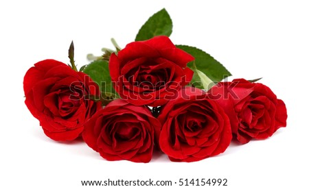 beautiful bouquet of red rose flowers isolated on white background