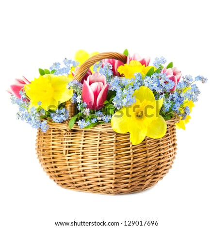 Beautiful Bouquet of  Spring Flowers into Basket / isolated on white background - stock photo