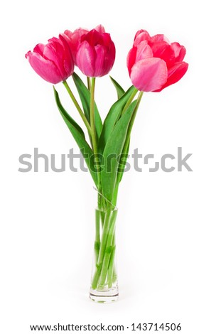 Beautiful bouquet of tulips isolated on white background - stock photo