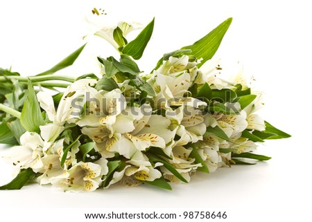 beautiful bouquet of white alstroemeria on a white background