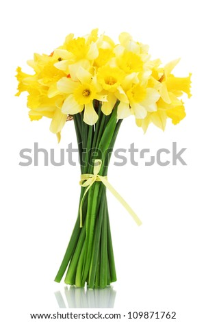 beautiful bouquet of yellow daffodils isolated on white - stock photo