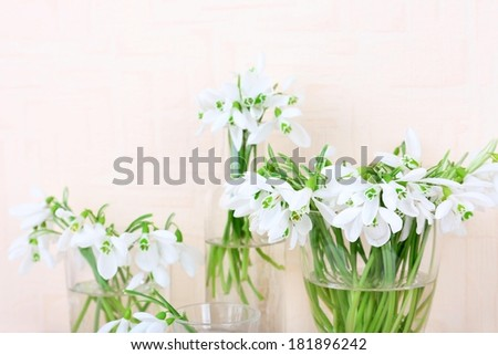 Beautiful bouquets of snowdrops in vases on light background