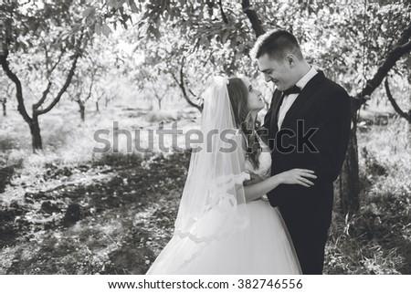 Beautiful Bride Related 27
