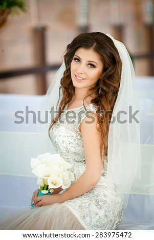 Beautiful Bride Portrait wedding makeup hairstyle Wedding dress. Model in white dress marriage day, soft selective focus.