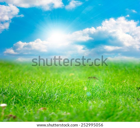 beautiful bright green meadow and sunny summer sky
