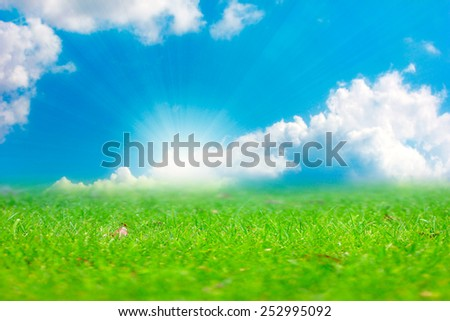 beautiful bright green meadow and sunny summer sky - stock photo