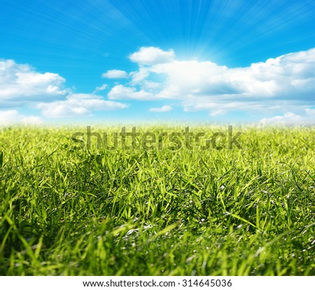 beautiful bright green meadow and sunny summer sunlight - stock photo