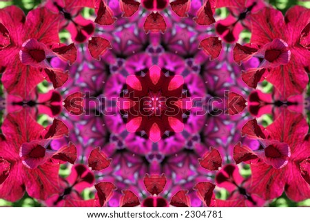 Beautiful bright kaleidoscope with colorful petunia . Background for summer or spring projects . - stock photo