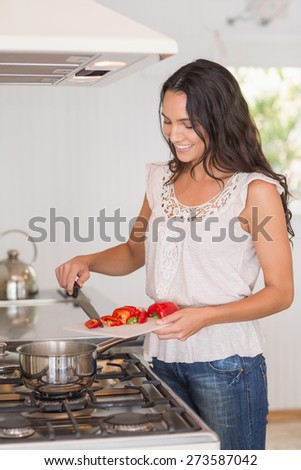 Beautiful brunette cooking in the kitchen - stock photo