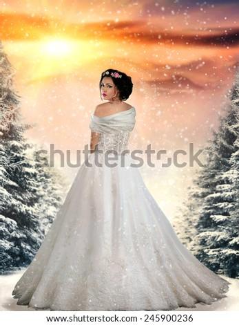 Beautiful brunette winter bride. Fantasy book cover - stock photo