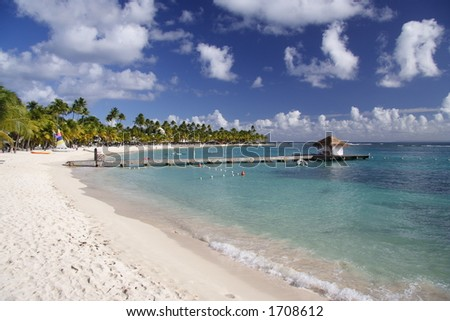 Beautiful caribbean beach - stock photo