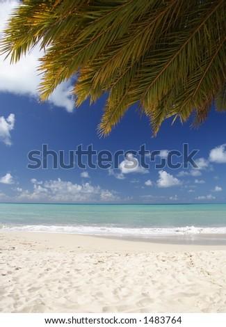 Beautiful caribbean beach with a palm leaf - stock photo