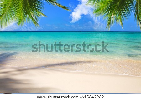 Beautiful caribbean sea and green palm leaves .
