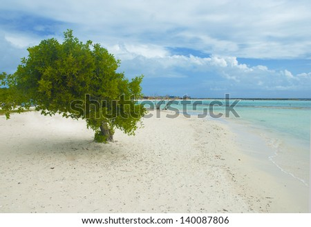 Beautiful Caribbean white sand beach - stock photo