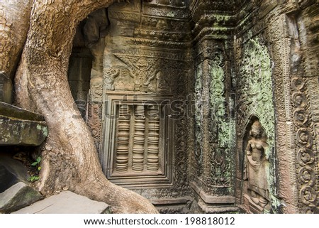 Beautiful carvings of Ta Prohm. Part of the Angkor Wat complex, Siem Reap, Cambodia - stock photo