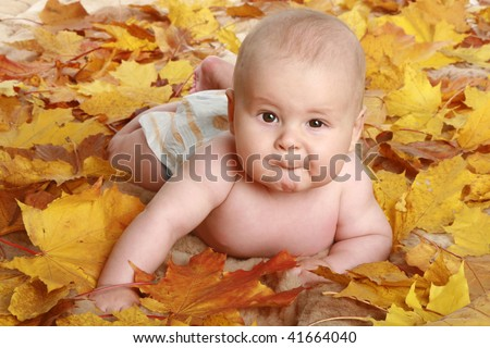 Beautiful child in autumn leaves - stock photo