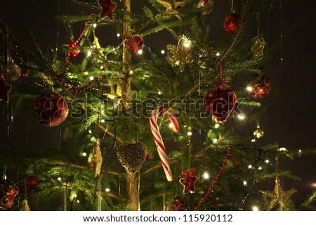 beautiful christmas tree on dark dckground - stock photo