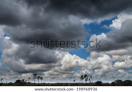 Beautiful cloud formations in the Florida Everglades Landscape with a variety of nimbostratus, cumulus, and cumulonimbus clouds during the wet season summer months - stock photo
