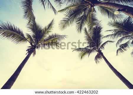 Beautiful Coconut palm tree on the beach and sea at sunrise time - Vintage Filter - stock photo
