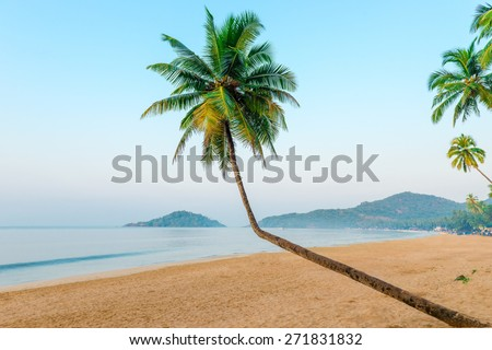 beautiful coconut palms and tropical beach - stock photo