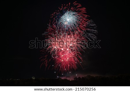 Beautiful colorful and professional fireworks with night sky and trees at the bottom - stock photo