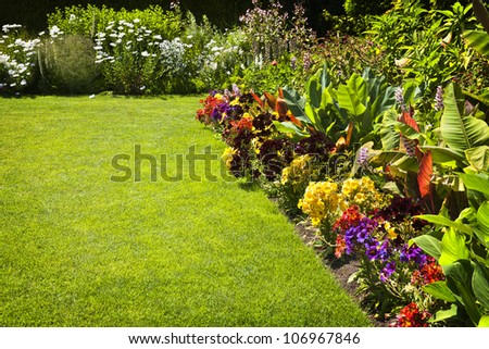 Beautiful colorful flower garden with various flowers - stock photo