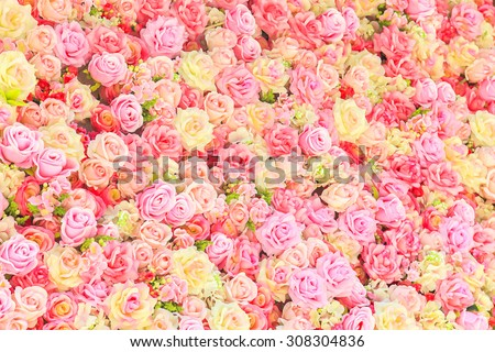 Beautiful colorful roses background - stock photo