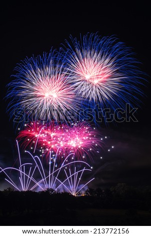 Beautiful colorfuland professional fireworks with night sky and trees at the bottom - stock photo