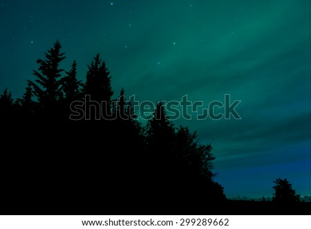 Beautiful colors of the Northern Lights (Aurora Borealis) behind a silhouetted treeline - stock photo