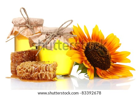 beautiful combs, honey and sunflower isolated on white - stock photo