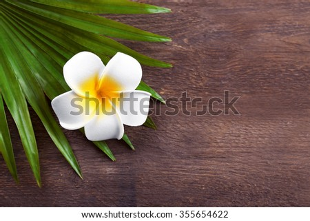 Beautiful composition of frangipani flower with palm leaves on wooden background, close up - stock photo