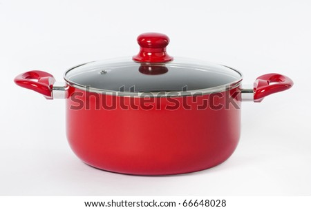 Beautiful cooking pot - stock photo
